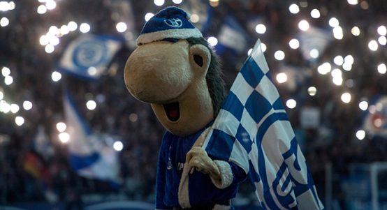 Schalke mascot Erwin at Christmas