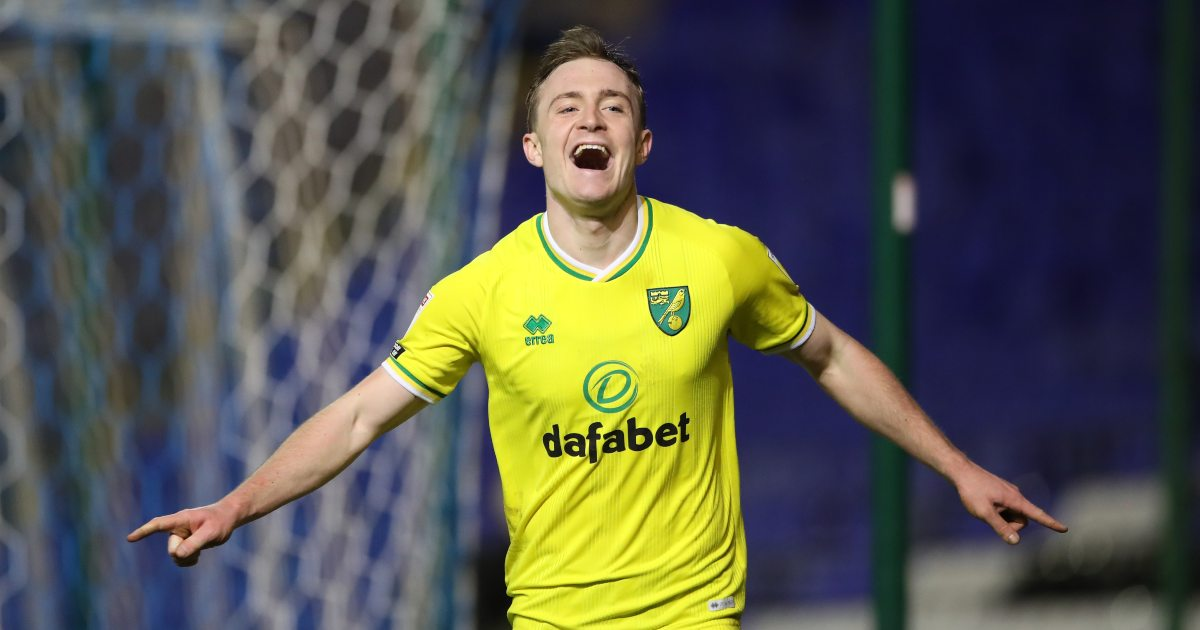 'He's a machine' – What's been said about Skipp at Norwich